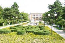 Коммунальные службы продолжают работы по благоустройству и озеленению города