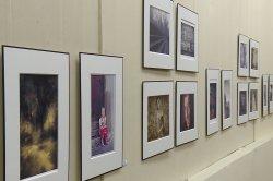 В Приднестровском государственном художественном музее открылись выставки