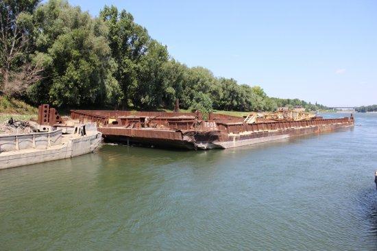 Субботник в Бендерском речном порту