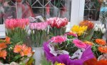 В Бендерах открыли новые цветочные магазины