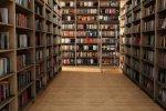 В микрорайонах «Шелковый» и «Борисовка» открылись филиалы городской библиотеки