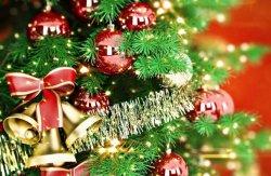 23 декабря в Бендерах состоится Открытие Новогодней Елки