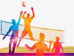 Вниманию любителей волейбола