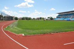 На городском стадионе подсчитывают количество занимающихся