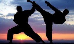 Фестиваль боевых искусств перенесли из Бендер в Тирасполь