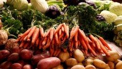 В субботу на Борисовке организуют расширенную торговлю сезонными овощами и фруктами