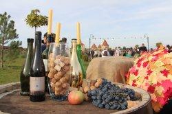 В Бендерах в субботу пройдёт фестиваль вина и винограда